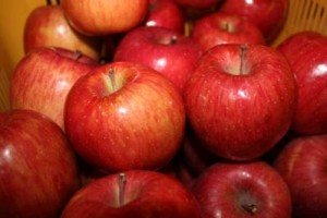 信州松本浅間温泉 ホテル玉の湯(玉之湯)  二村農園さんのりんご