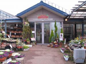 長野県バリアフリーの世界松本浅間温泉 ホテル玉の湯(玉之湯) HAMAフラワーパーク安曇野なら冬でも花が楽しめます